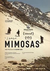 MIMOSAS (Árabe - Español)